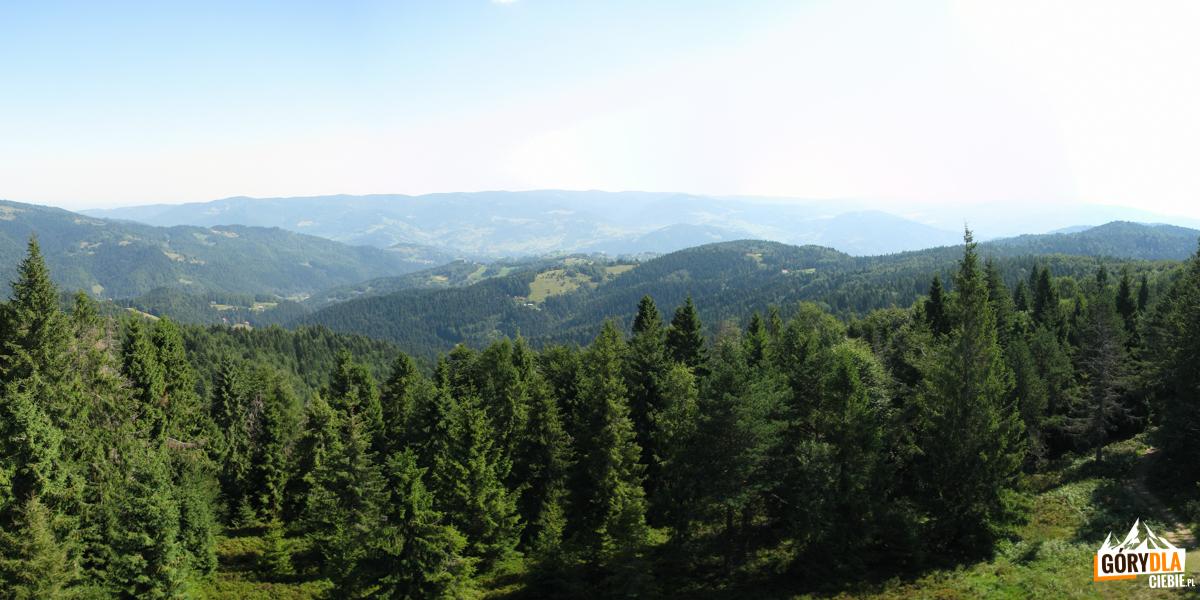Pasmo Jaworzyny Krynickiej i w dole Kosarzyska - widziane z wieży widokowej na Eliaszówce