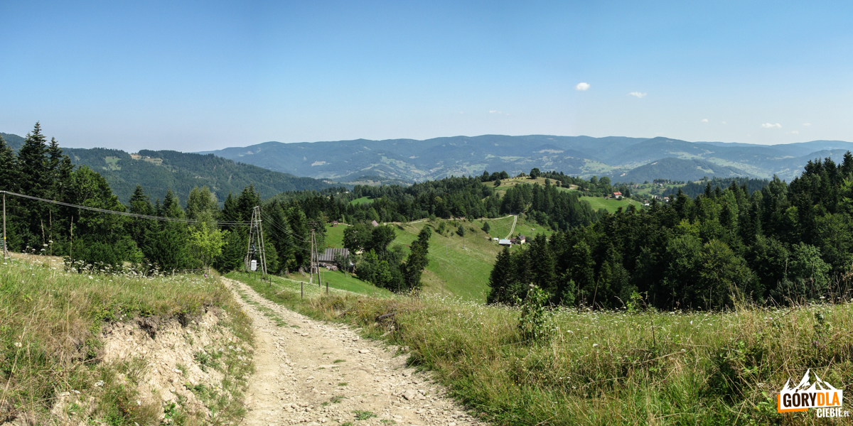 Widokowe polany na drodze zejścia niebieskim szlakiem z Eliaszówki do Kosarzysk