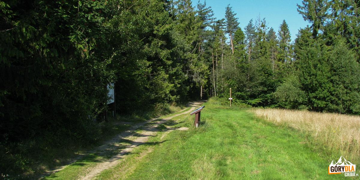 Polana Górna Stacje (930 m) w drodze na Eliaszówkę