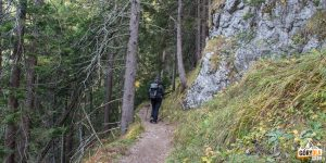 Ścieżka zielonego szlaku do Schroniska pod Szarotką (słow. chata Plesnivec)