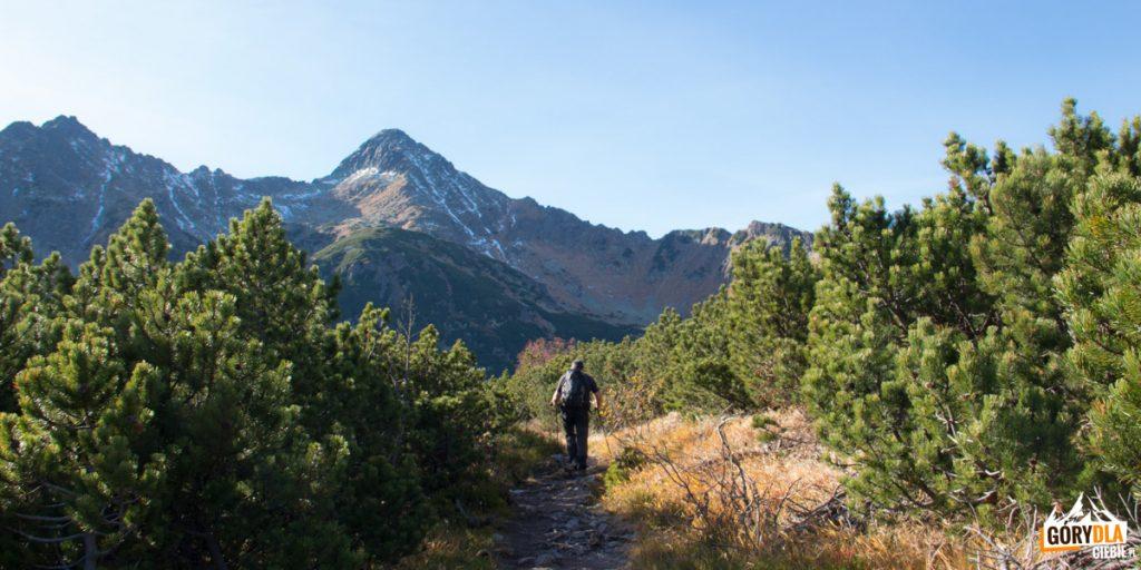 Przejście z Doliny Przednich Koperszadów do Doliny Białych Stawów