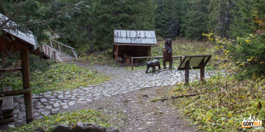 Wiaty i drewniane rzeźby niedźwiedzi w Dolinie Zadnich Koperszadów