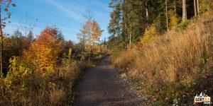 Droga zielonego szlaku (i niebieskiego) na Szumny Pramen