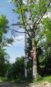 Stalowy krzyż przy szlaku zejścia do Krościenka