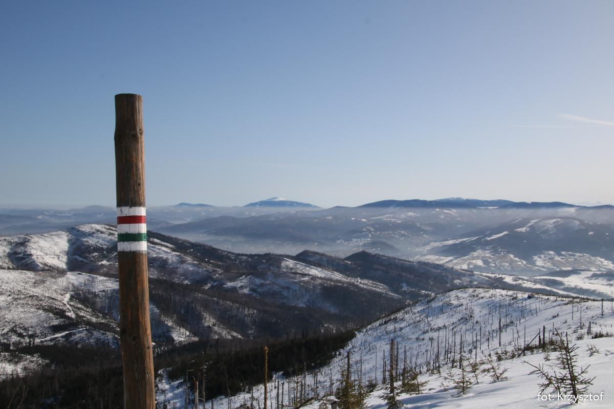 Widok z wieży na Baraniej Górze, zdj. Krzysztof R.