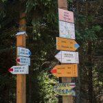 Skrzyżowanie szlaków pod Wielkim Rogaczem (1182 m)