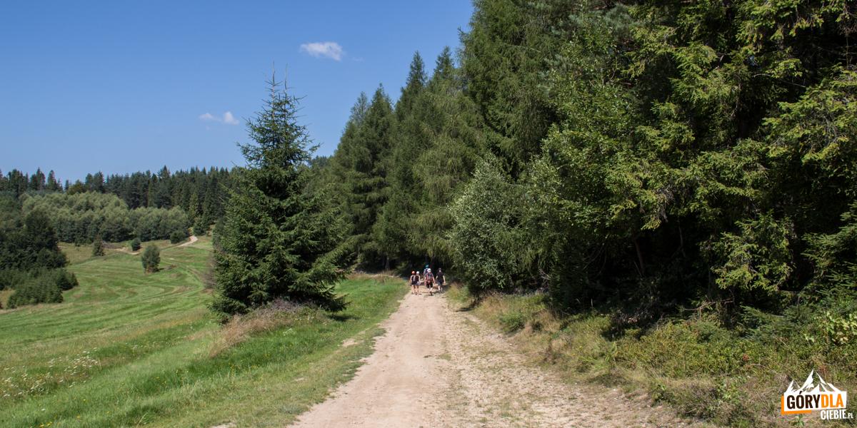 Polany przy Przełęczy Obidza