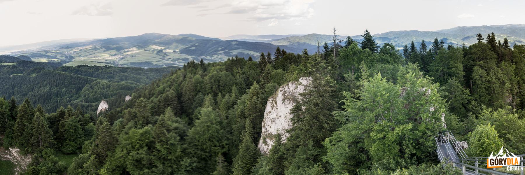 Panorama ze szczytu Trzech Koron (982 m) na Gorce i na horyzoncie Mogielicę
