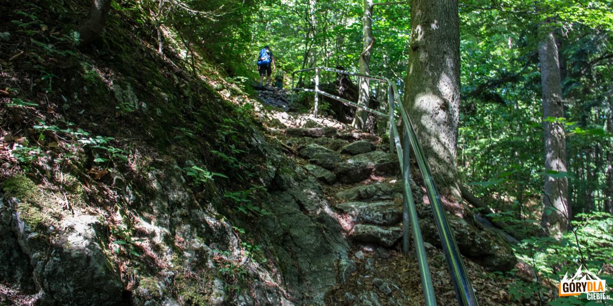 Podejście niebieskim szlakiem ze Szczawnicy na Sokolicę