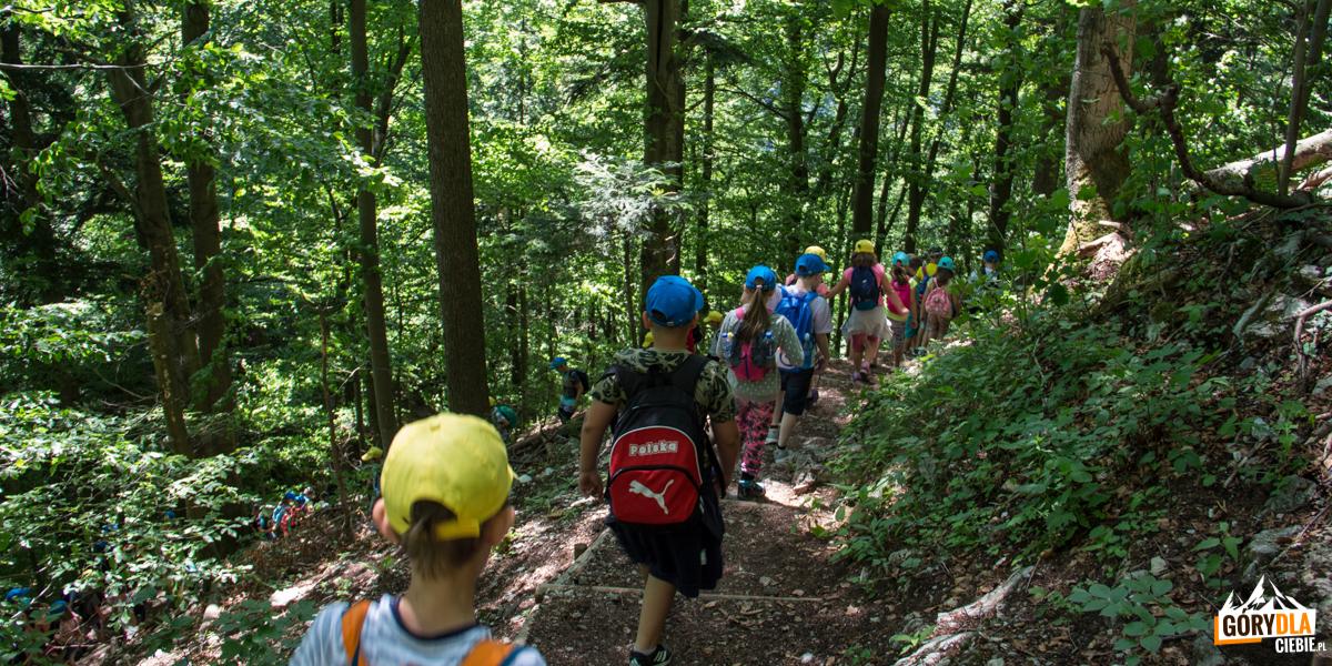 Podejście z Przełęczy Sosnów na Czertezik (772 m)