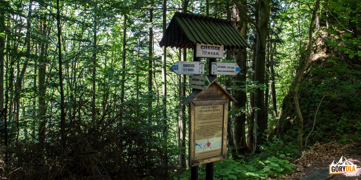 Drogowskazy pod szczytem Czertezika (772 m)