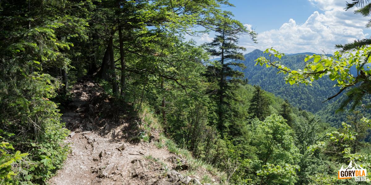 Na szlaku Sokolej Perci