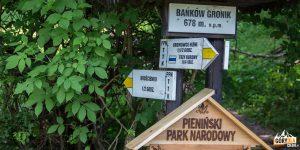 Skrzyżowanie szlaków na Bańków Gronik (678 m)