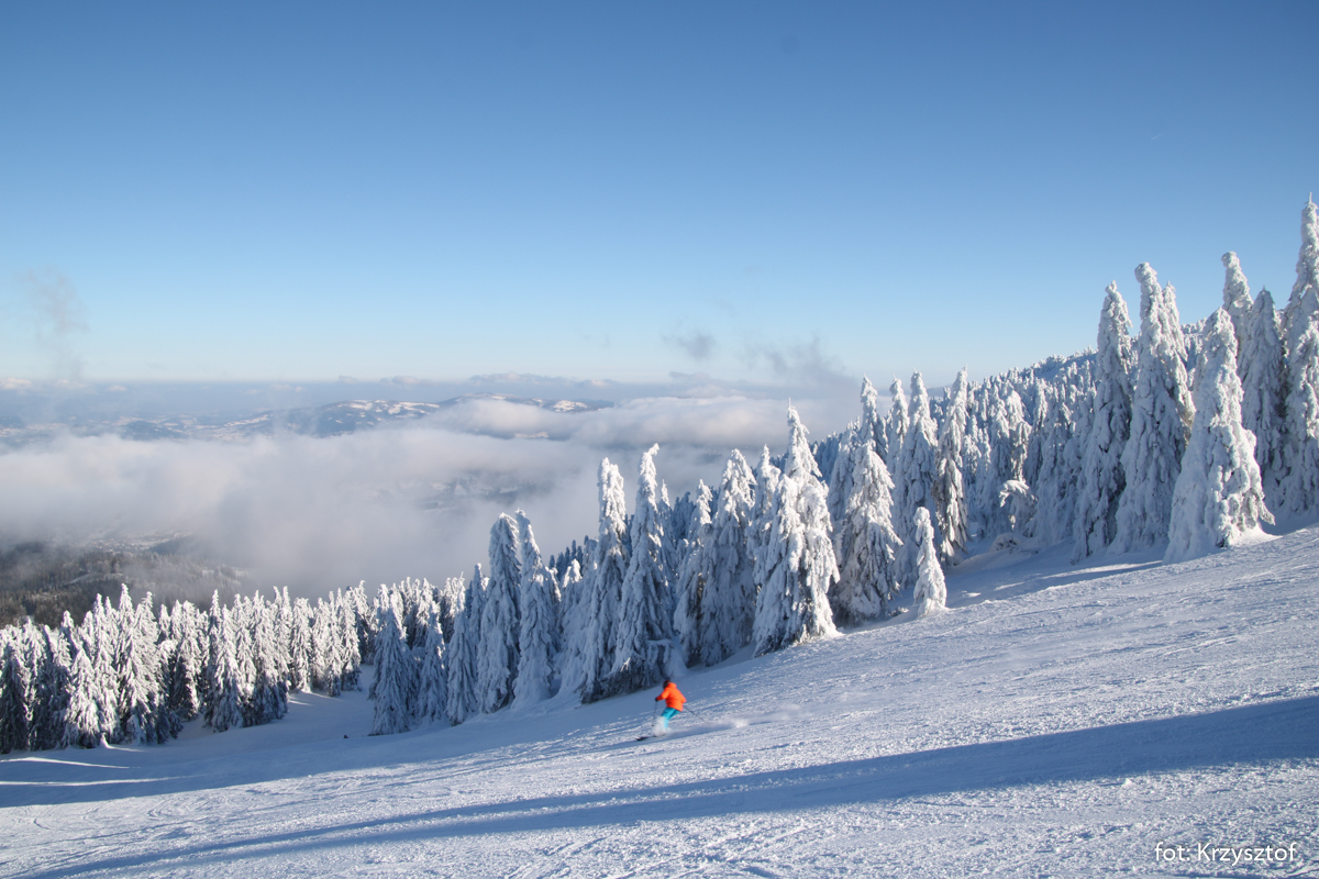 Hala Miziowa, raj narciarzy na stoku nad schroniskiem