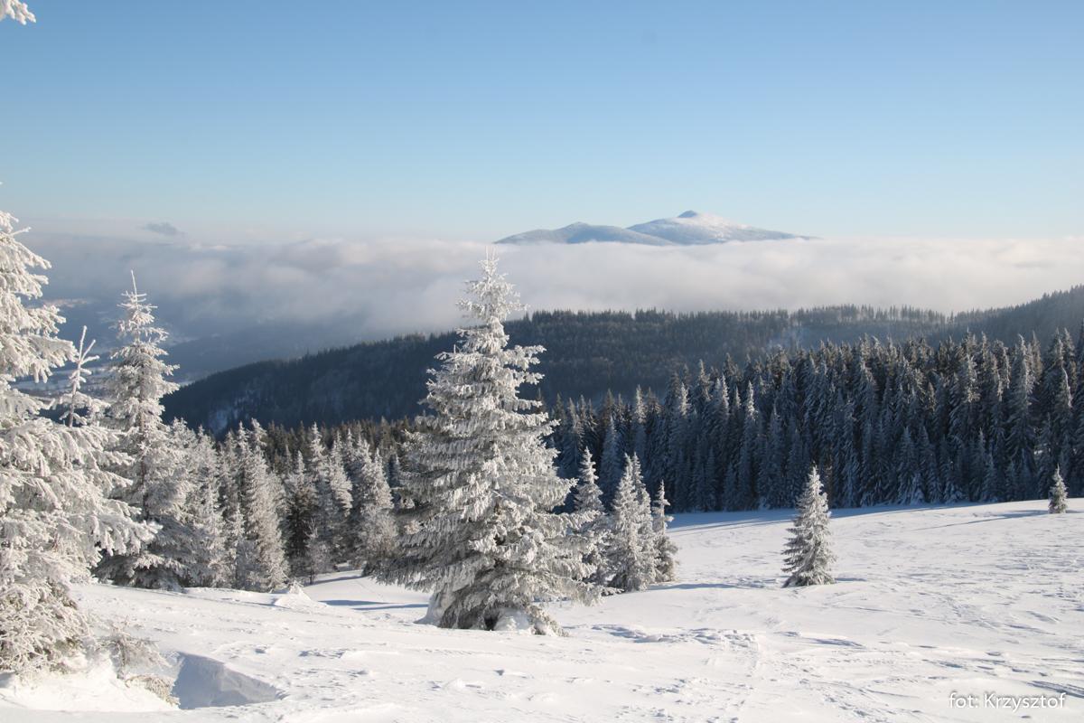 Widok z Hali Jodłowcowej na Babią Górę