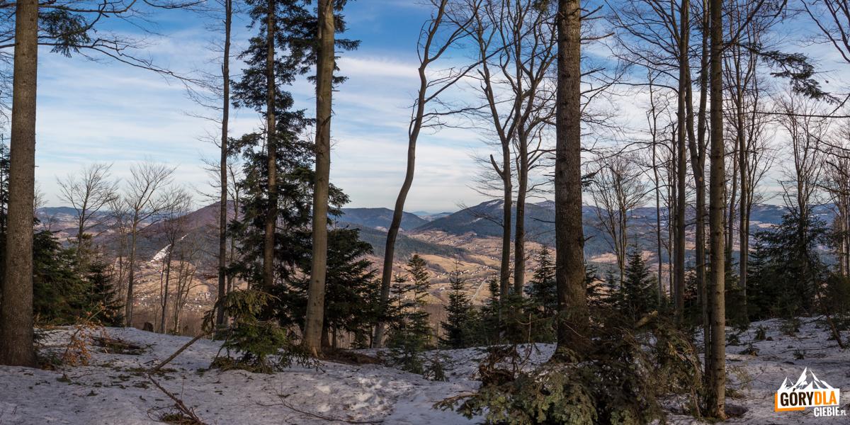 Widoki ze szczytu Lubogoszczy (968 m)