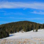 Kucałowa Przełęcz - widok na Złotą Grapę i Policę