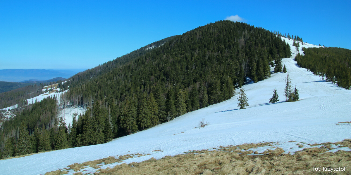 Romanka (1366 m), szczyt w dziesiątce najwyższch w polskich Beskidach