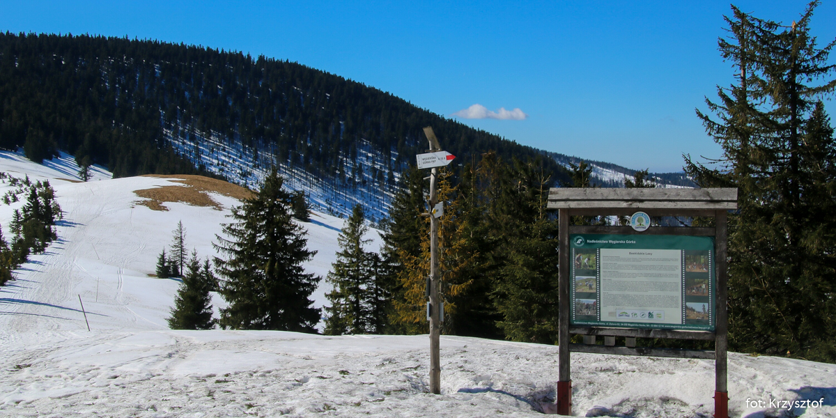 Rozstaje szlaków na Przełęczy Pawlusiej