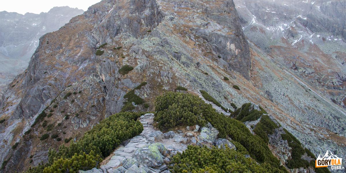 Zejście z Małego Kościelca na Przełęcz Karb
