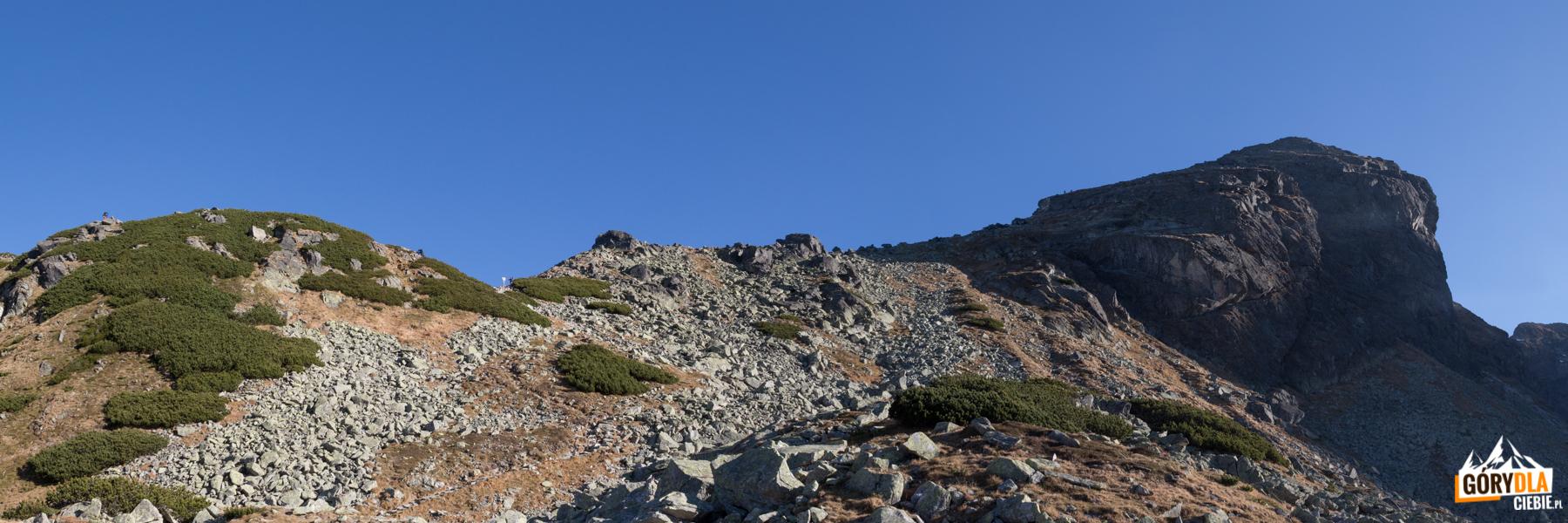 Kościelec widziany spod przełęczy Karb (niebieski szlak)