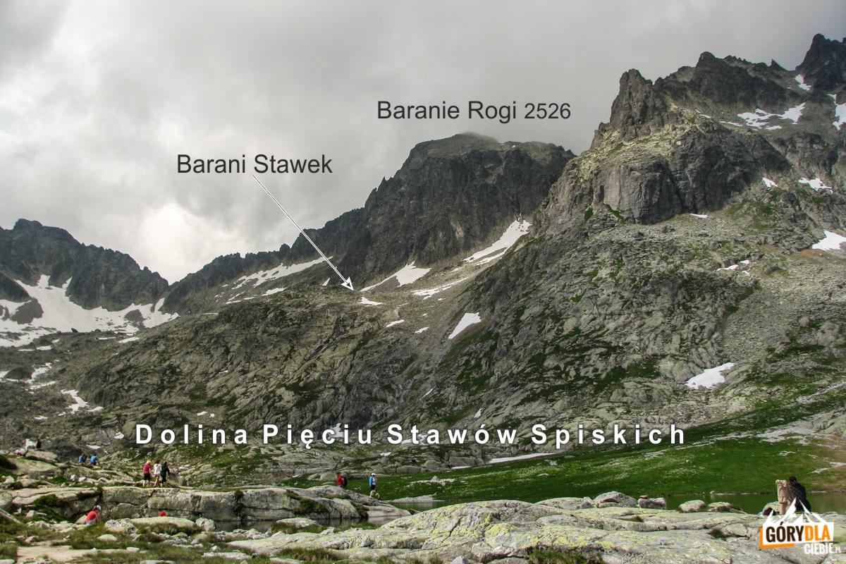 Barani Stawek