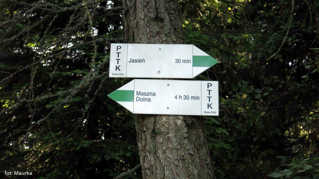 Na trasie na Jasień, zdj. Maurka