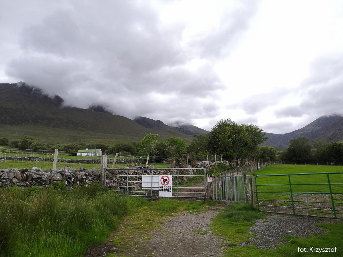 Idąc z Cronin's Yard przechodzimy najpierw koło murków i ogrodzeń