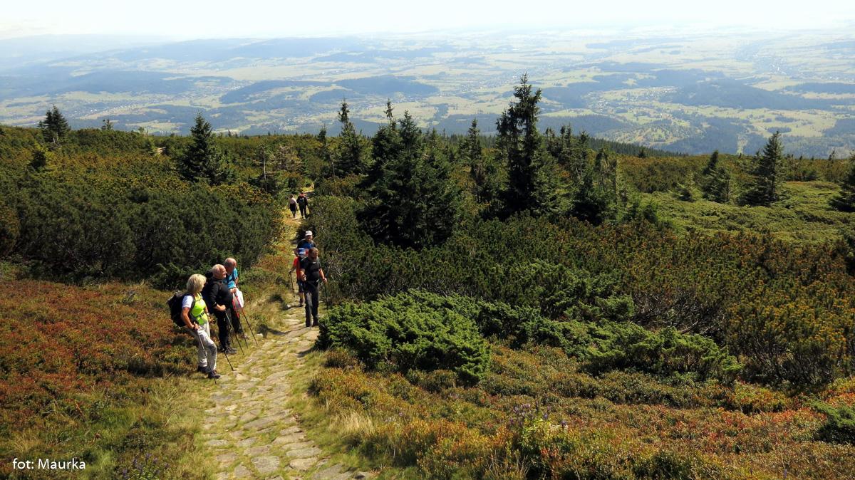 Na trasie zielonego szlaku na szczyt Babiej Góry
