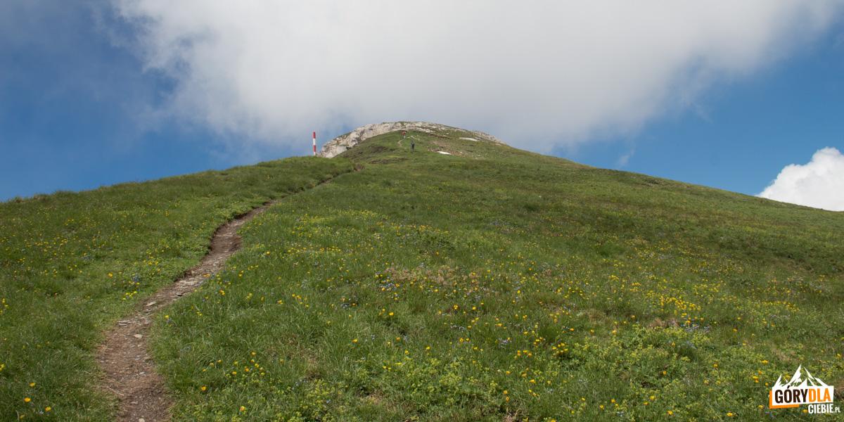 Wejście granią na szczyt Korabu