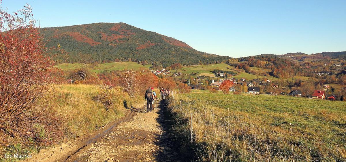 Zejscie niebieskim szlakiem do Jurkowa