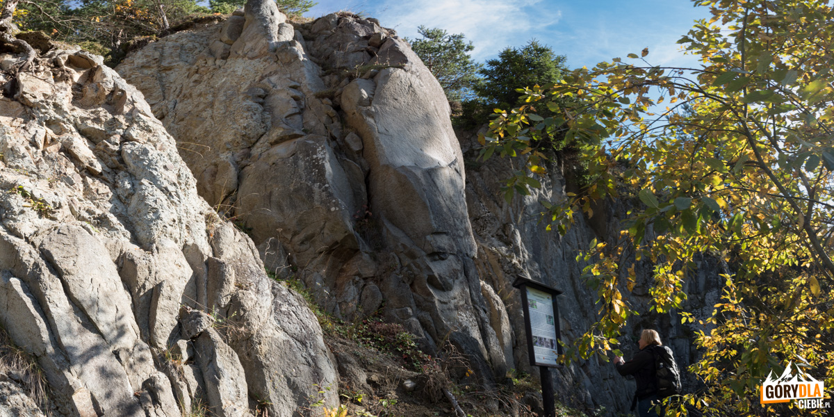 Wąwóz w starym kamieniołomie