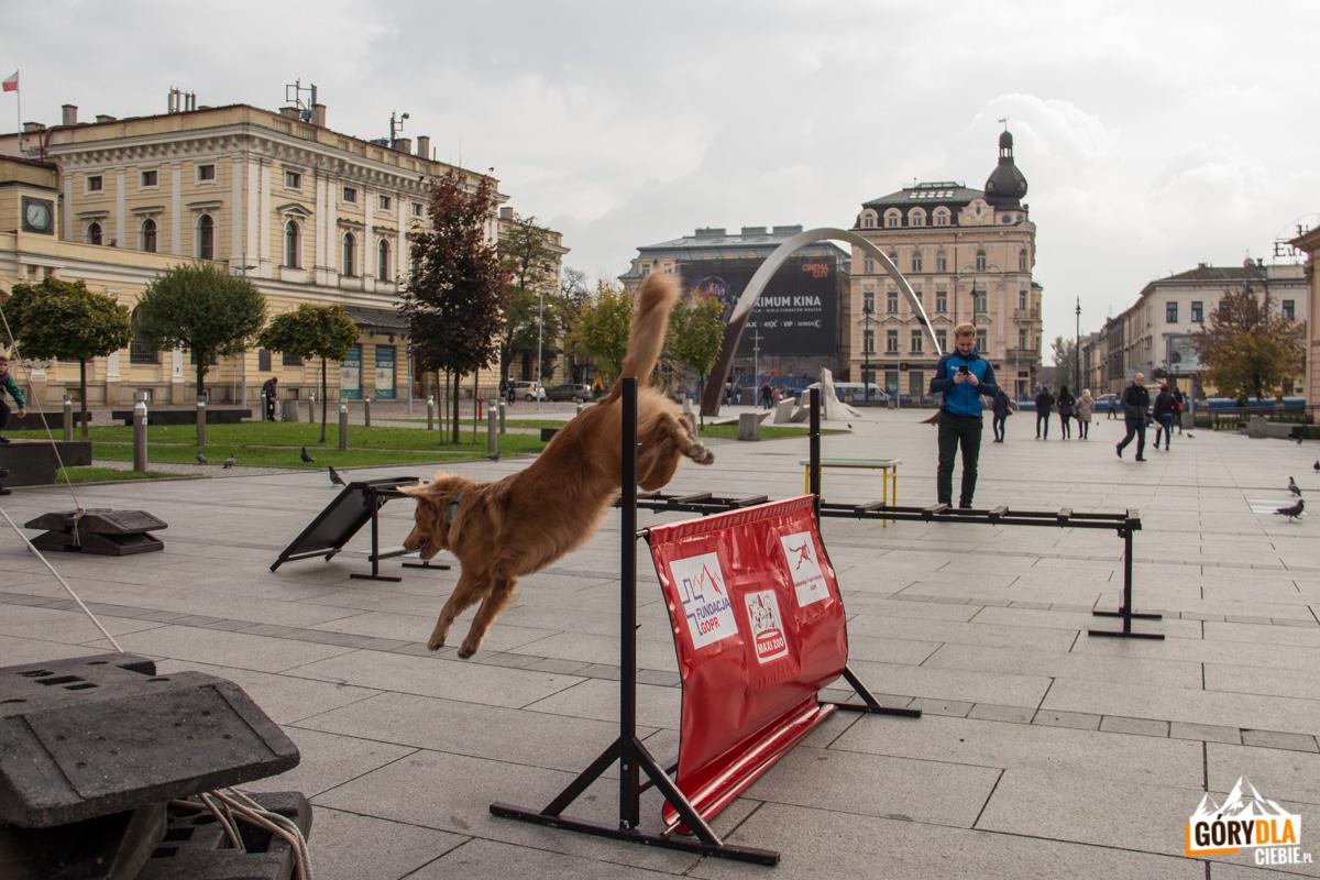 GOPR w Krakowie
