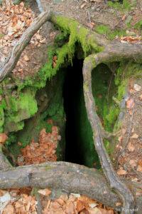 """Jaskinia """"Dziura pod Bukiem"""""""