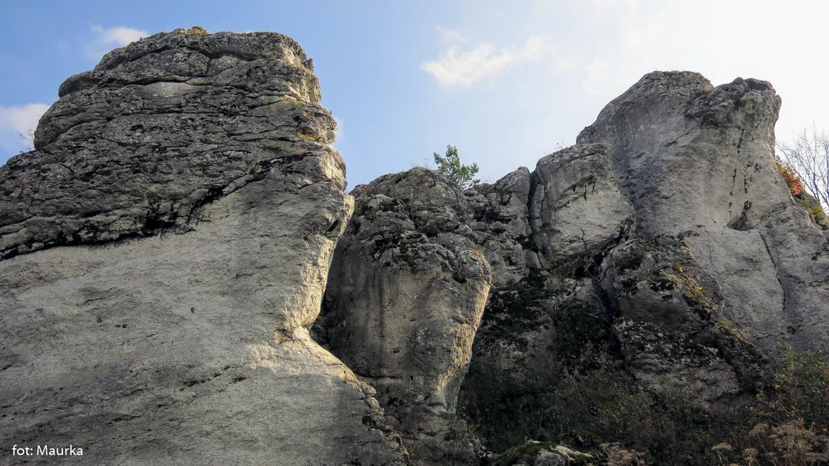 Zamek w Mirowie, zdj. Maurka