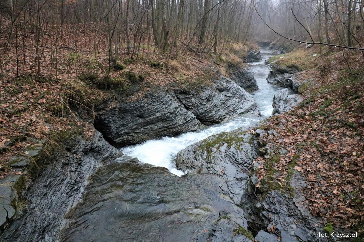 Potok Pracica