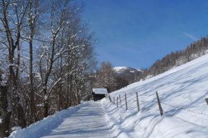 Winterwandern Panoramaweg © BRM - Gerhard Ortner