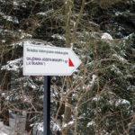 Mogielica zimą z Przełęczy Rydza Śmigłego, zdj. Maurka