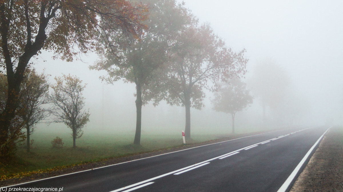 Początek szlaku - Gołoszyce