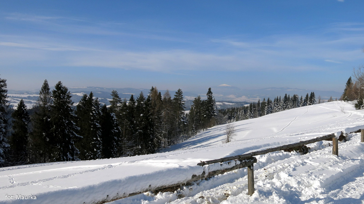 Panorama z Maciejowej, zdj. Maurka