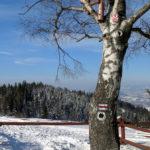 Szlaki przed schroniskiem na Maciejowej zdj. Maurka