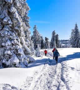 Zimą Gorce są piękne