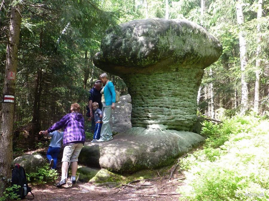 Góry Stołowe - skalne grzyby