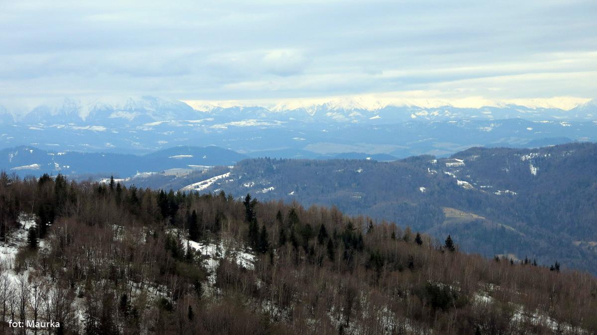 Panoramy z wieży widokowej na Koziarzu