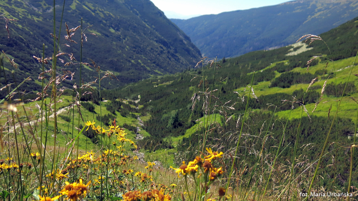 Úzka dolina - Žiarske sedlo i dolina