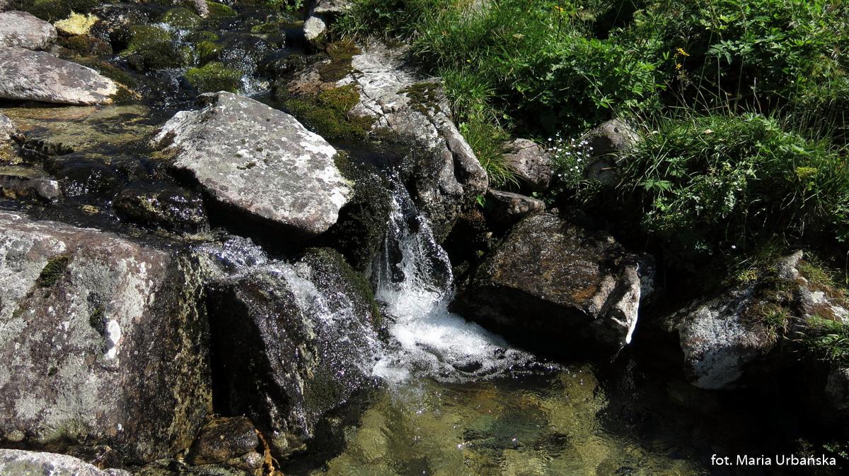Jałowiecki Potok (słow. Jalovský potok)