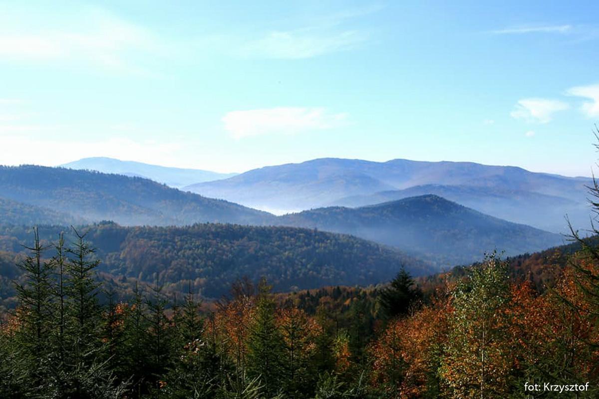 Taki widok z niego na Magurę, Klimczok, Szyndzielnię i w tyle Skrzyczne. Przed nimi Łysa Góra
