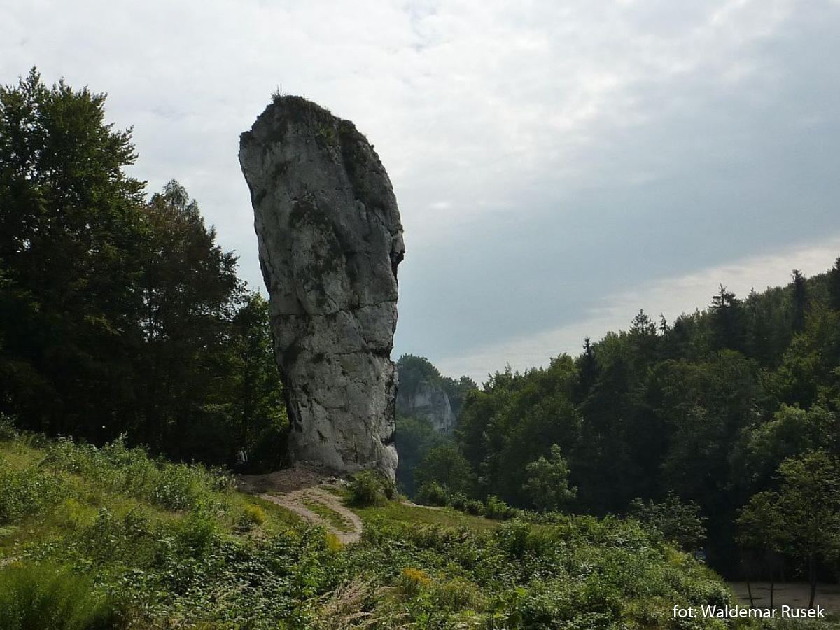 Maczuga Herkulesa koło Zamku Pieskowa Skała