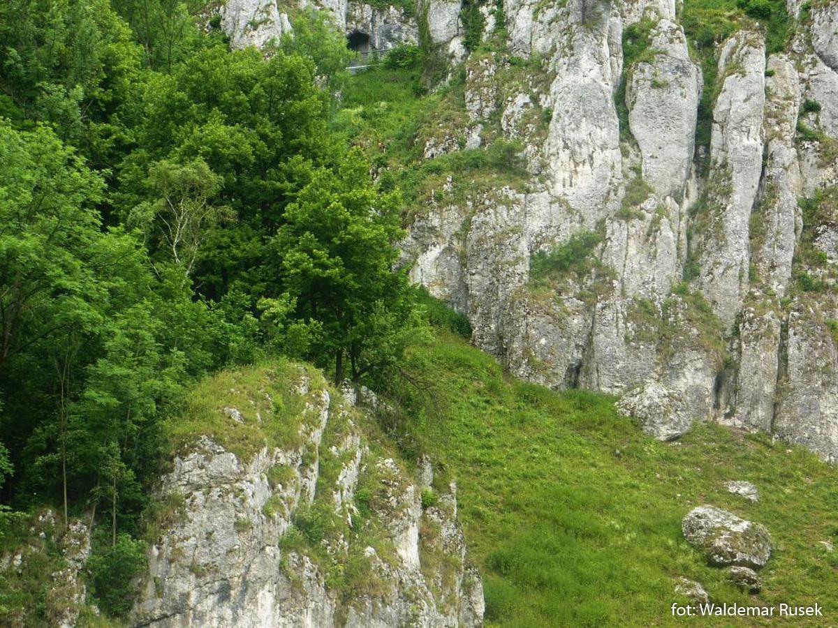Ojcowski Park Narodowy - taras widokowy w skale Rękawica