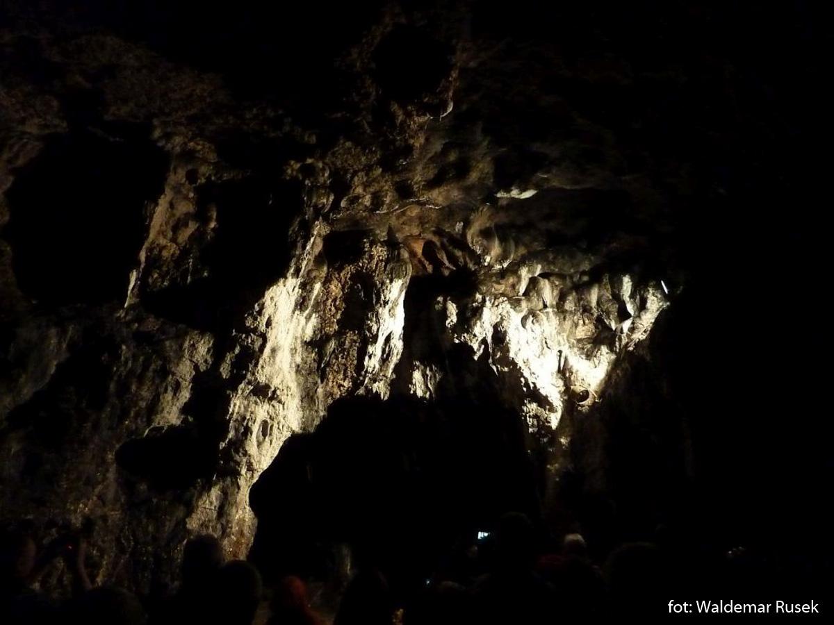 W Jaskini Łokietka